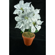 Silver Metallic Poinsettia Bush x 5 (lot of 1 bush) SALE ITEM