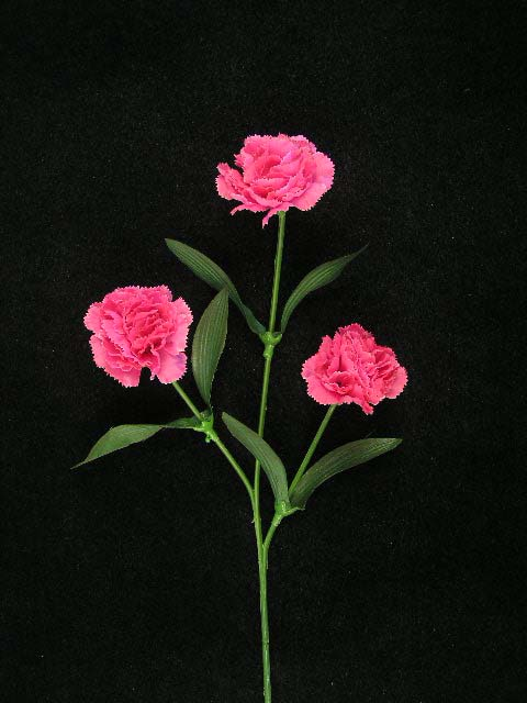 Beauty pink carnation silk flower click to enlarge image mightylinksfo