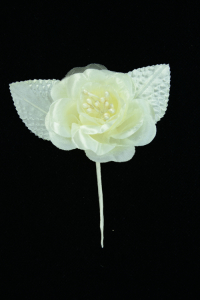 Ivory Open Rose  (Lot of 12) SALE ITEM