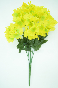 Yellow Hydrangea Bush x6  (Lot of 1) SALE ITEM