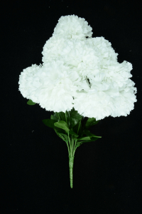 White Carnation Bush x12  (Lot of 1) SALE ITEM