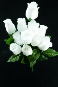 White Rosebud Bush x12  (Lot of 12) SALE ITEM