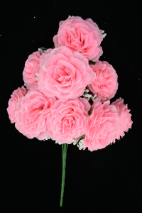Pink Open Rose Bush x9  (Lot of 12) SALE ITEM