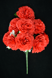 Red Open Rose Bush x9  (Lot of 12) SALE ITEM