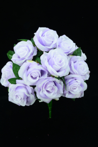 Lavender Open Rose Bush x11  (Lot of 12) SALE ITEM