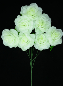 Ivory Open Rose Bush x7  (Lot of 12) SALE ITEM