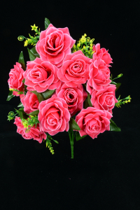 Coral Open Rose Bush x12  (Lot of 1) SALE ITEM