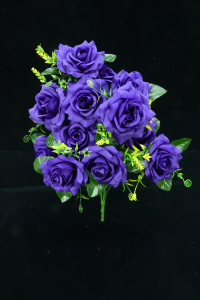 Purple Open Rose Bush x12  (Lot of 1) SALE ITEM