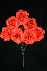 Red Open Rose Bush x7  (Lot of 1) SALE ITEM