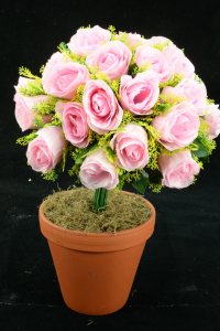 Pink Rosebud Bush x24  (Lot of 48) SALE ITEM