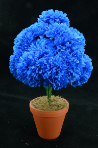 Royal Blue Carnation-Mum Bush x12  (Lot of 1) SALE ITEM