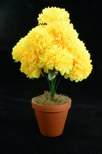 Yellow Carnation-Mum Bush x12  (Lot of 12) SALE ITEM